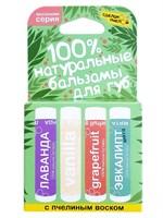 """Натуральные бальзамы для губ """"Весенняя Серия"""", коробка 4 штуки"""
